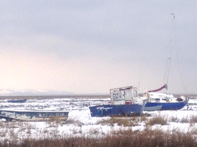 dreamboat forsale