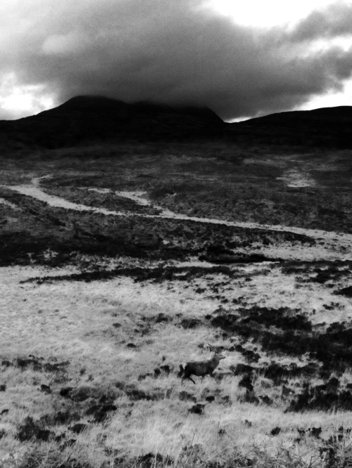 Heavy highland skies