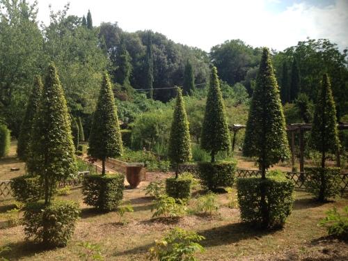 Inventive topiary!